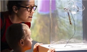 Link to event Exhibition tours for families – Criss-Crossing Ecologies